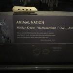 AmericanindianMuseum04