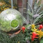 BotanicGardens03