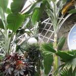 BotanicGardens08